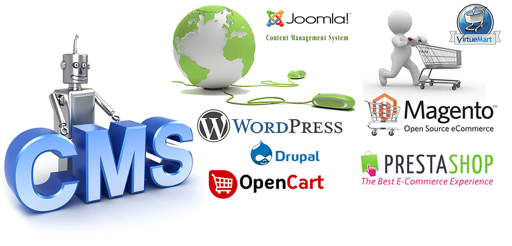 Portal CMS Development